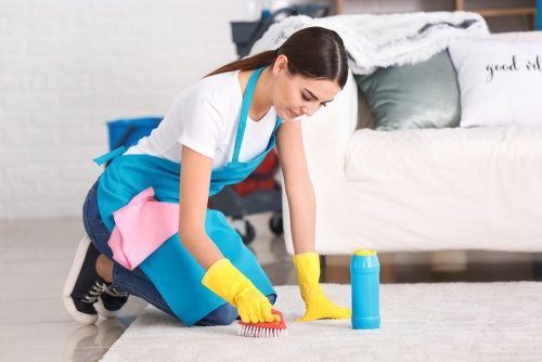 Carpet disinfection services
