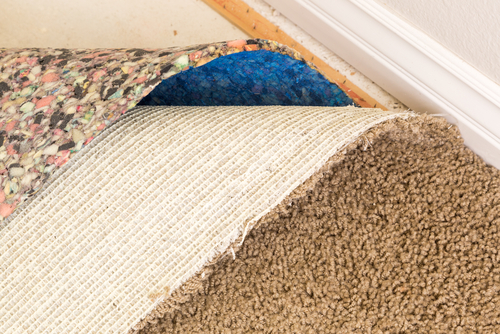 How To Restore Carpet From Water Damage?
