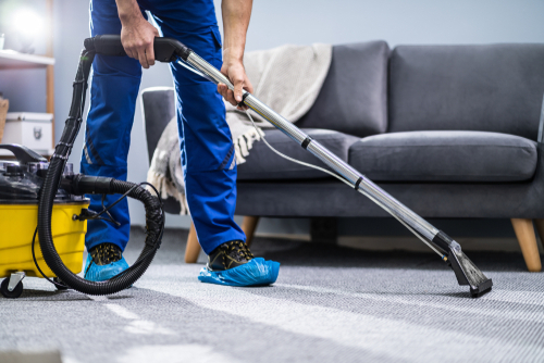 How Often Should I send Carpet for Dry Cleaning?